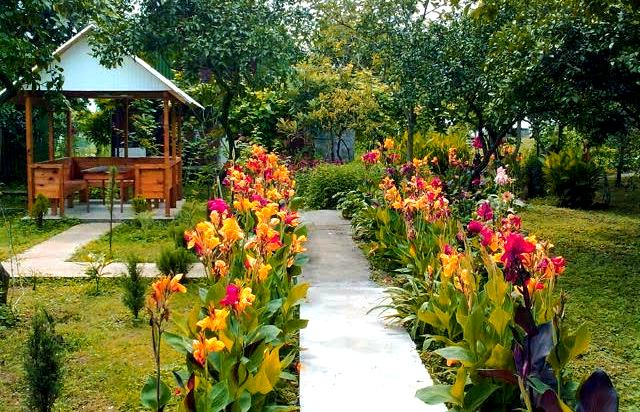 Гостевой дом в Гонио: от $30 в день